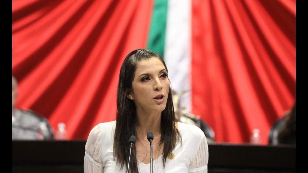 Ana Laura Bernal Camarena, diputada federal del PT
