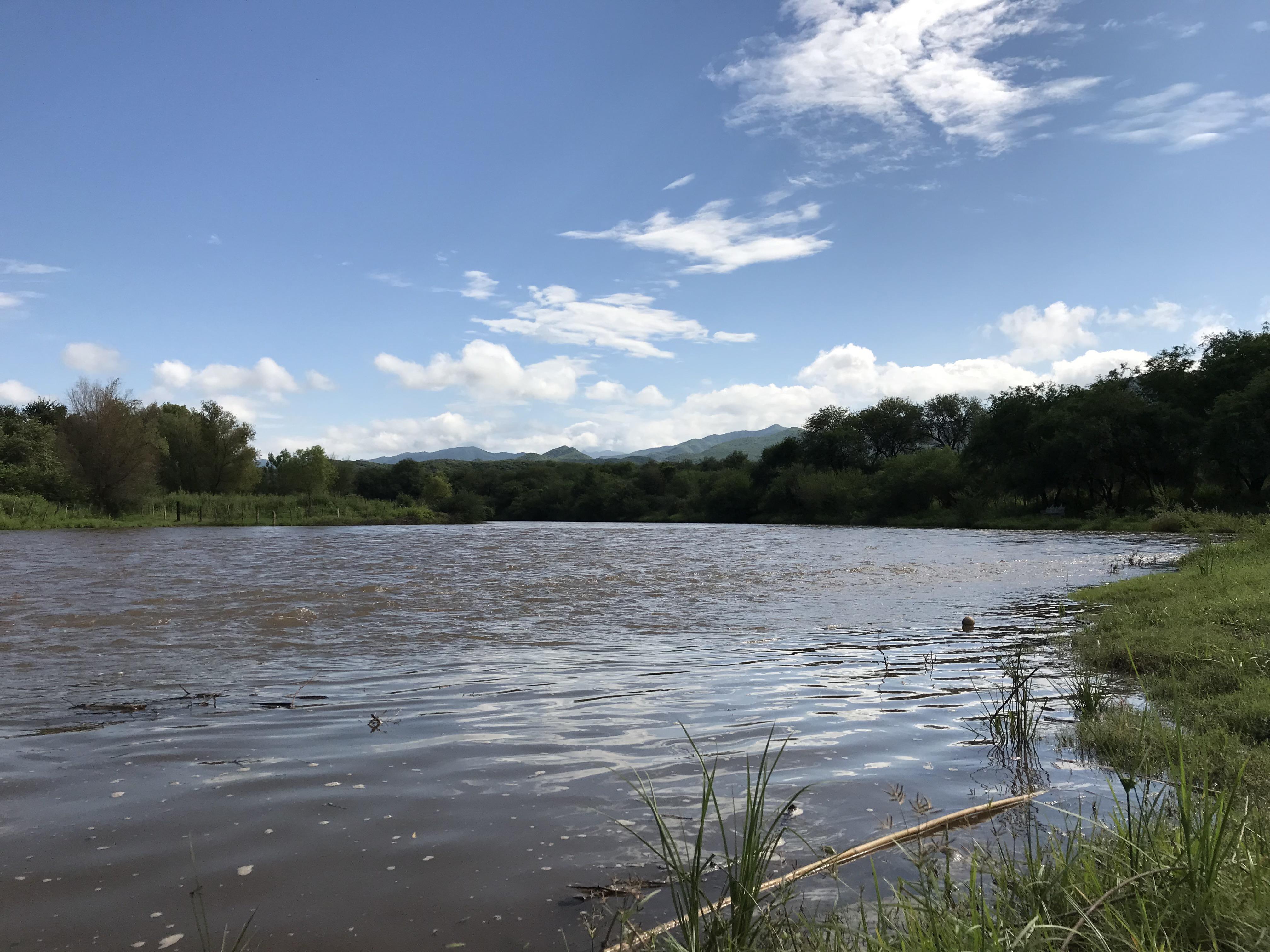 Contingencia ambiental en el Río Yaqui de Sonora