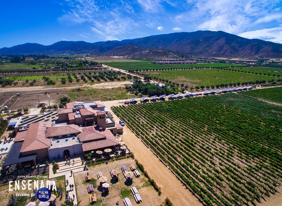 Baja California vino