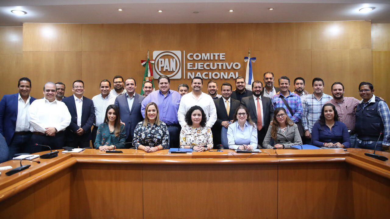 Comisión de elecciones del PAN