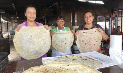 Las tortillas de agua son el ícono culinario de Sonora