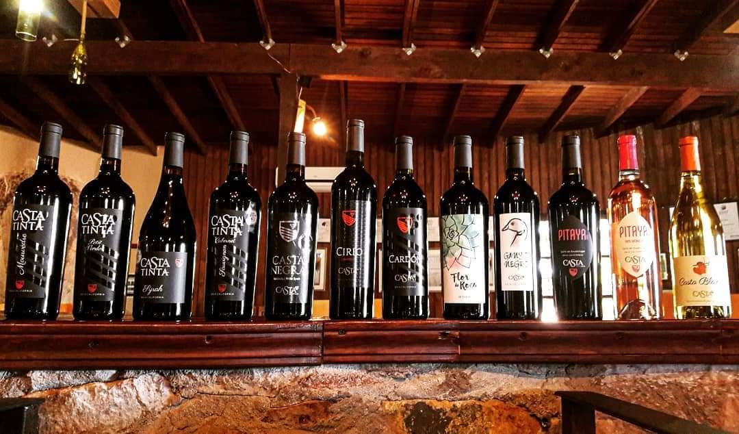 Un vino tinto bajacaliforniano competirá por un premio en Europa