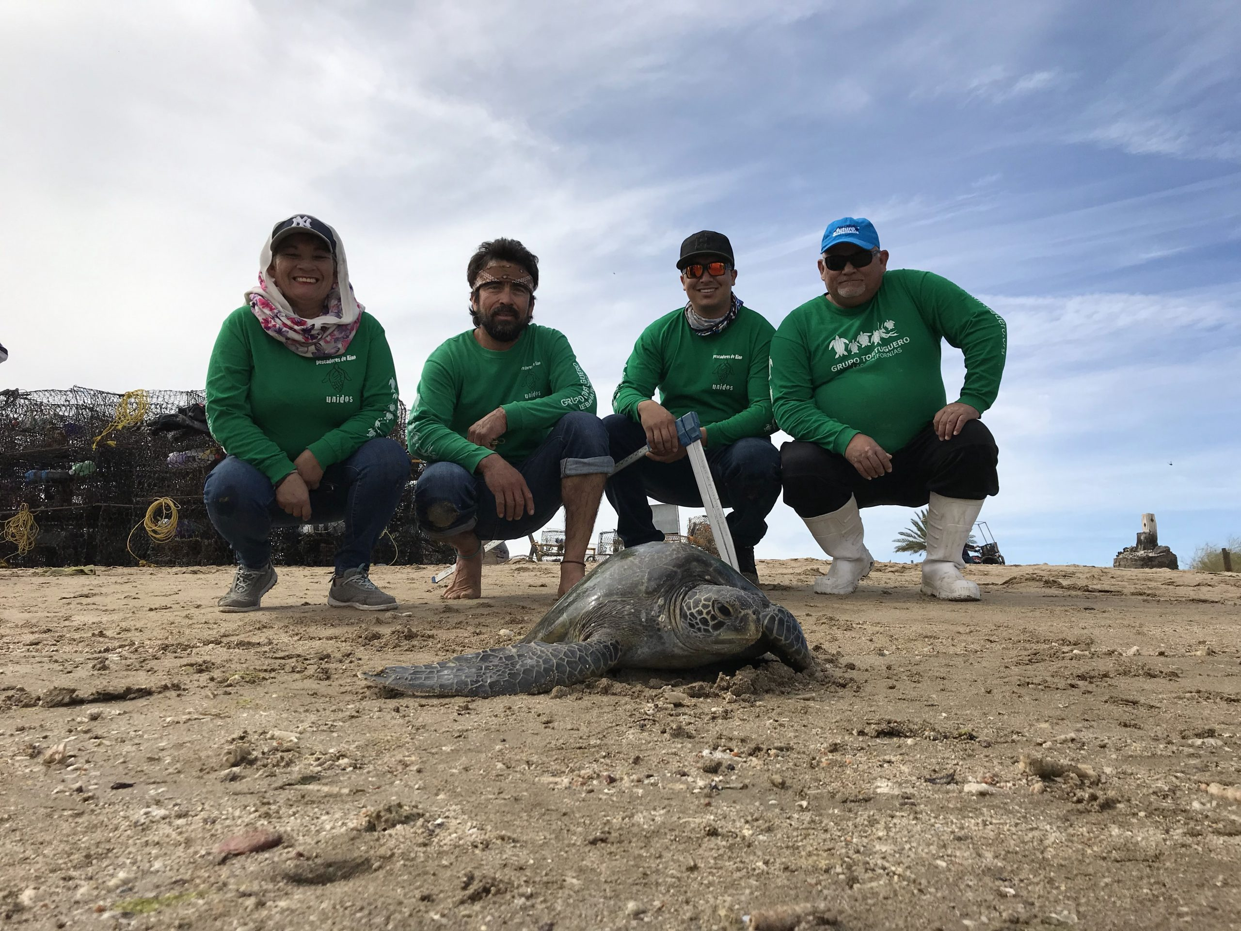 Tortugas Becerra