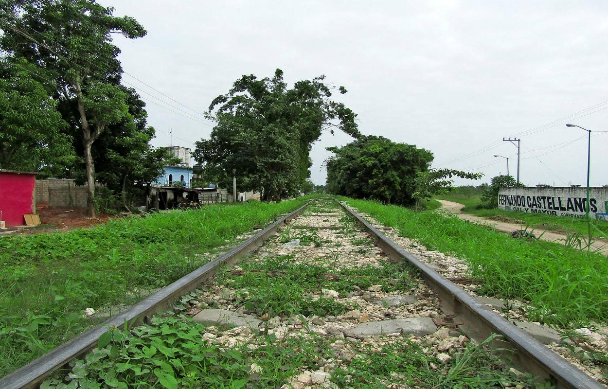 Empresa China y Mota-Engil ganan licitación para construir primer tramo del Tren Maya