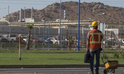 El regreso a la actividad laboral es cosa seria: evita la cárcel y multas por Covid-19