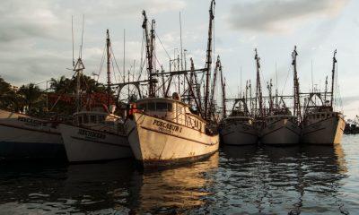 Hacienda golpea a las pesqueras quitándoles el subsidio al diésel: Coparmex
