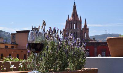 enoturismo vinos Guanajuato
