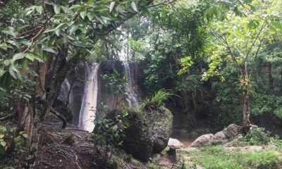 Contiene imagen exterior, cascada, río, agua, árboles