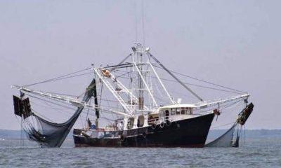 barcos pesqueros La Ribera Los Barriles